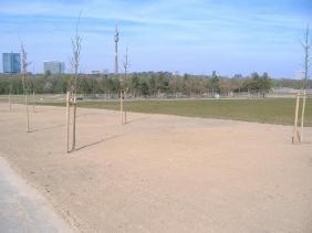 PHOENIX Park (Landschaftskeil) mit B1-Skyline | Bildrechte: nickneuwald