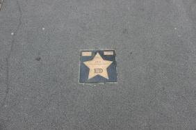 Stern am Signal Iduna Park für die Meisterschaft 2011/2012   Bildrechte: nickneuwald