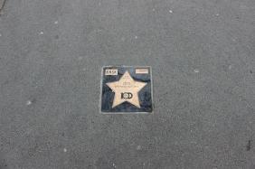 Stern am Signal Iduna Park für den DFB-Pokalsieg 2012   Bildrechte: nickneuwald