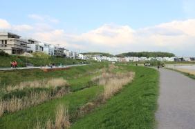 Emscherauen am Dortmunder PHOENIX See | Bildrechte: nickneuwald