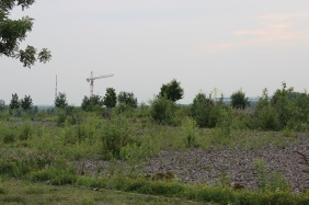 Baufeld Hauptverwaltung NORDWEST Handel AG | Bildrechte: nickneuwald