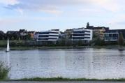 SWAN am PHOENIX See | Bildrechte: nickneuwald